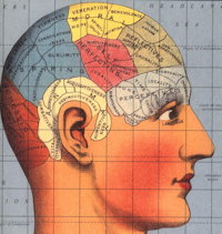 Brainsets and Creativity