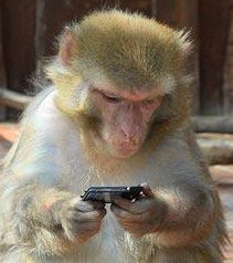 monkey-iphone