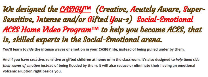 Social-Emotional ACES Program
